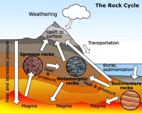 Sedimentary Rocks Formation Animation Images u0026 Pictures ...