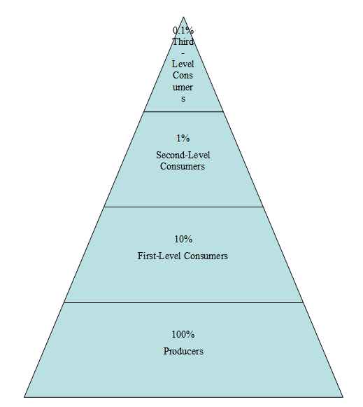 Worksheets Energy Pyramid Worksheet conservation of energy sas l3 01energypyramid png