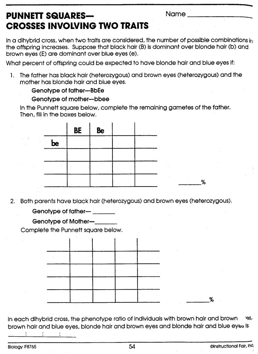 Printables Dihybrid Cross Worksheet dihybrid punnett square practice worksheet davezan cross versaldobip